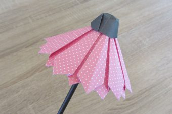 Origami Blume Sonnenhut (Echinacea)