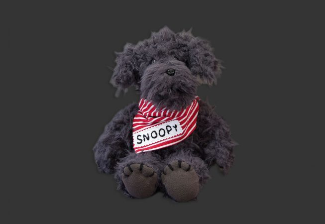 Pudel Snoopy front