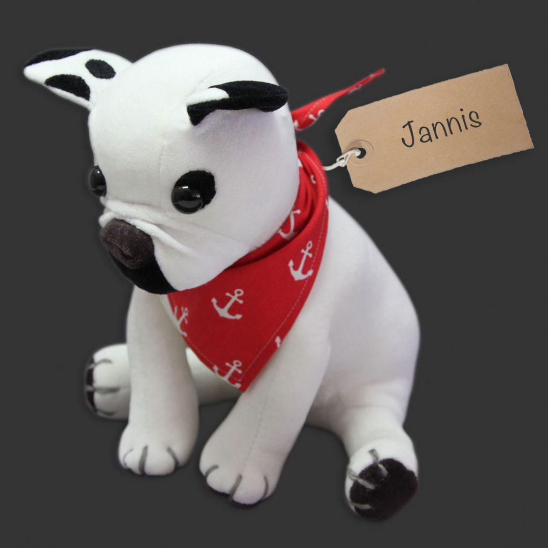 Bulldogge Jannis